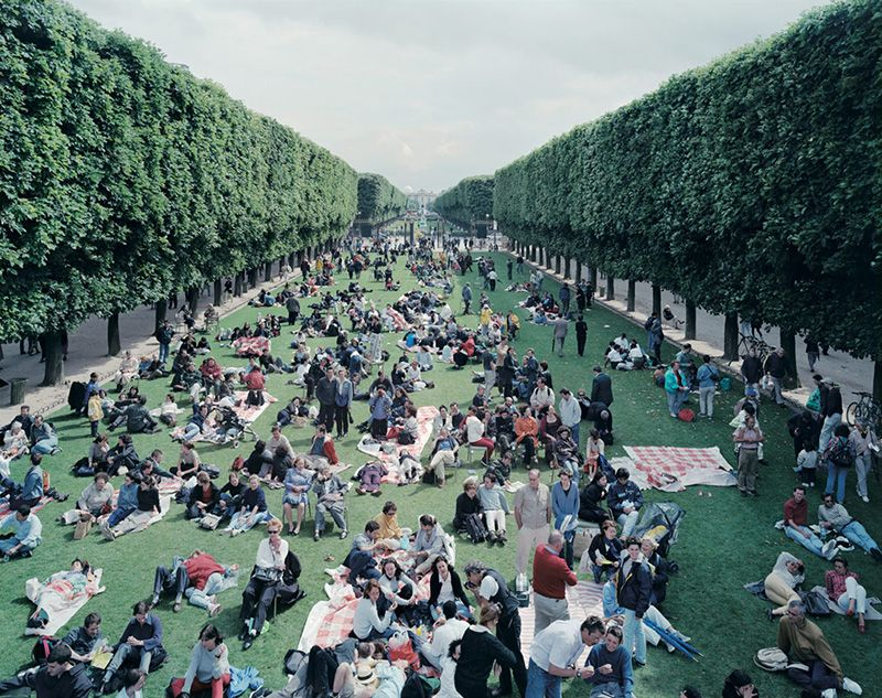 Picnic Allee from