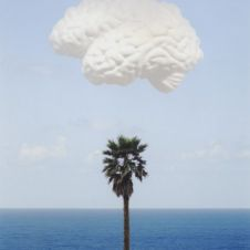 Brain/Cloud