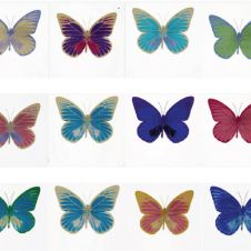 Souls I, 12 butterflies individually