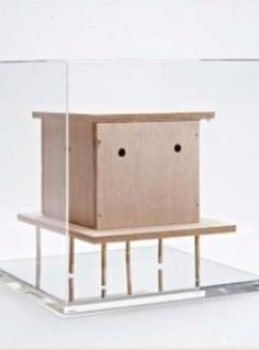 Mark McGowan: Bird House, 2008