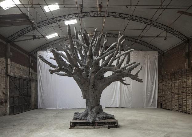 - aww_tree_2013_hires_0